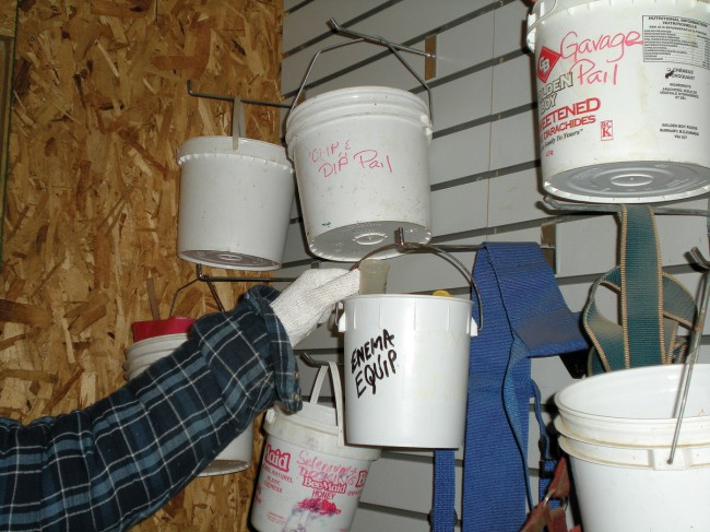 """This well-organized system of having supplies needed for various tasks """"ready to grab and go"""" is a trick Debbie learned from mentor Vera Mokoski. Photo by Kathleen Raines."""