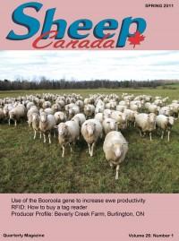 Sheep Canada - Spring 2011